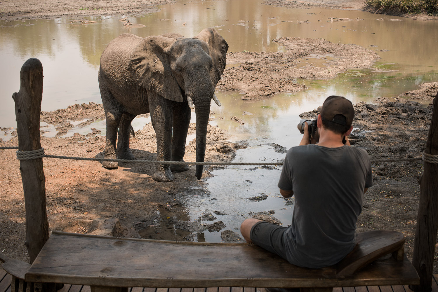 26.__kanga_camp_photography_from_main_area_with_elephant.jpg