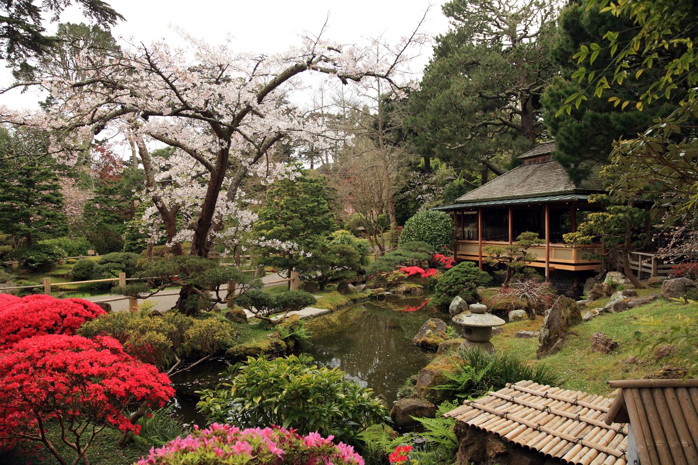 Japanese Tea Garden and Tea House