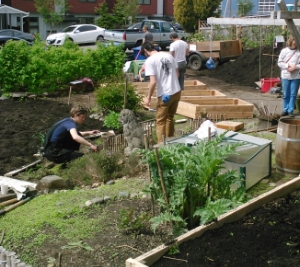 Urban Farm Work Party