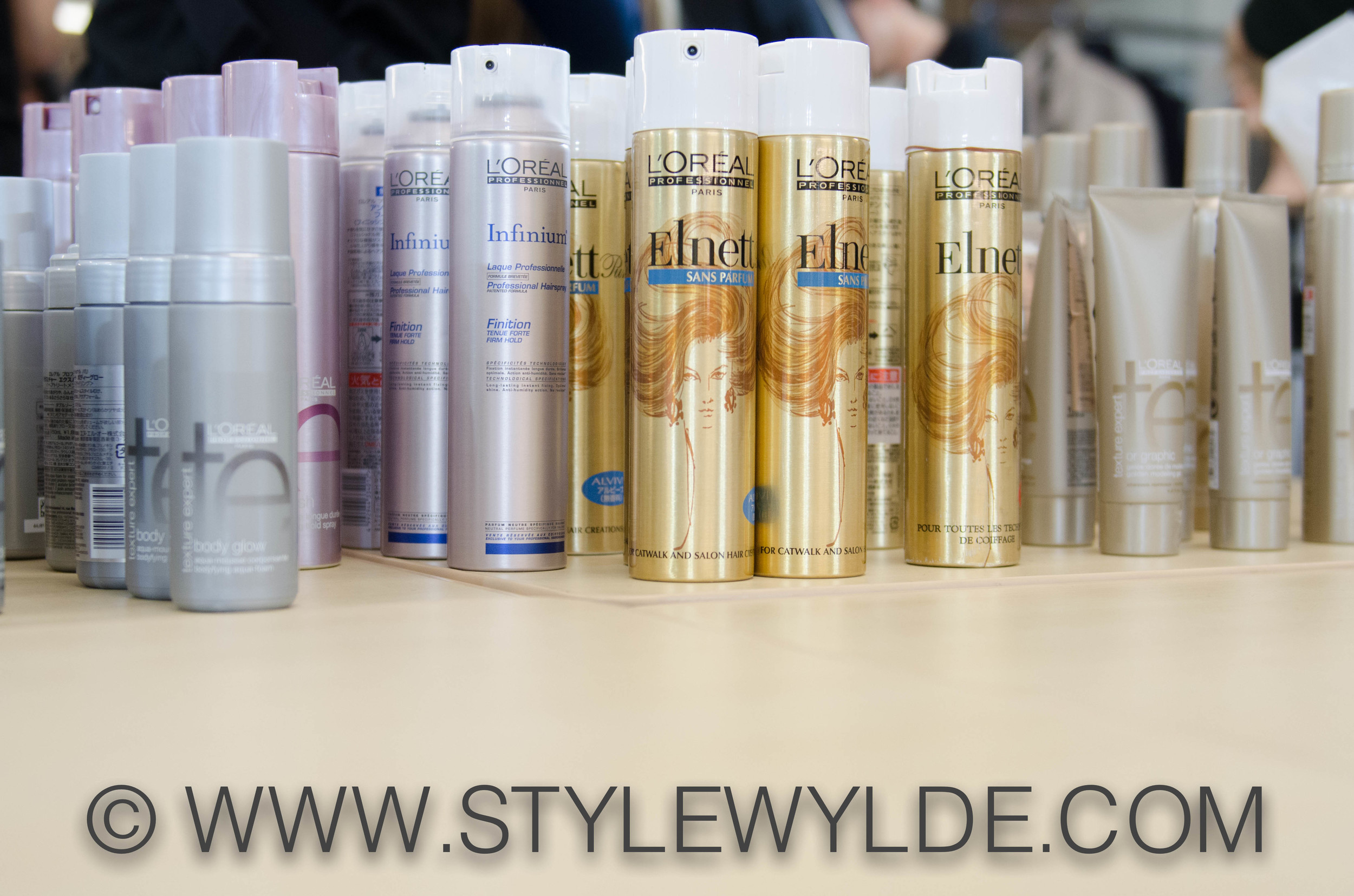 StyleWylde_Loreal_Products_1.jpg
