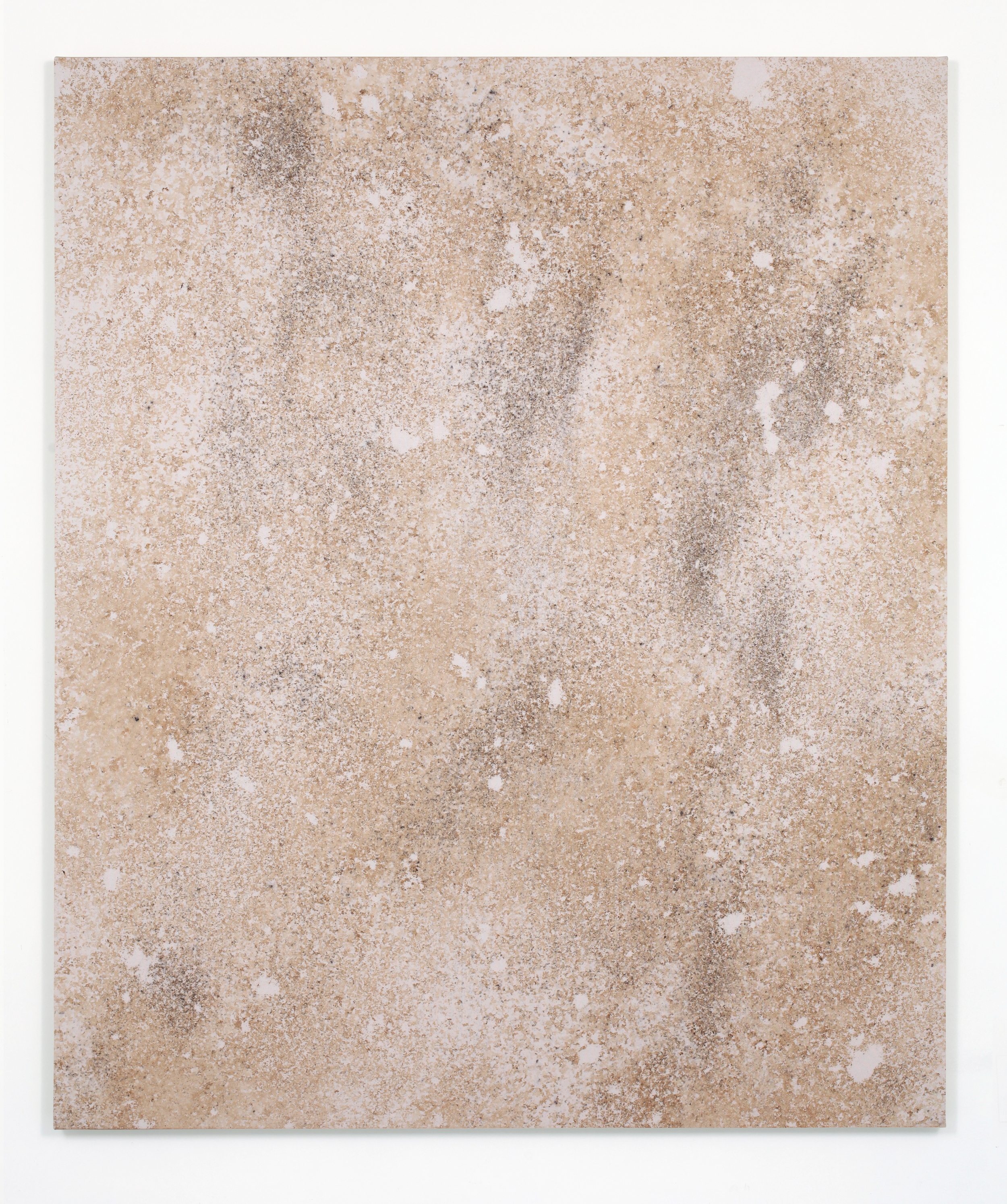 Untitled 5 (Stain), 2014