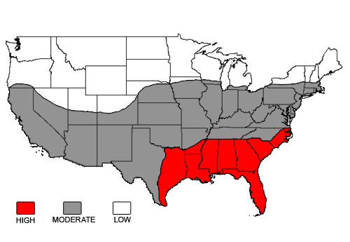 A map showing the distribution of Subterranean Termites in the U.S. Courtesy of The Department of Urban and Structural Entomology at Texas A&M University.
