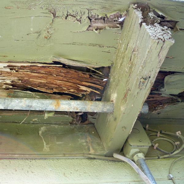 Termite damage is shown on an exterior wooden awning.