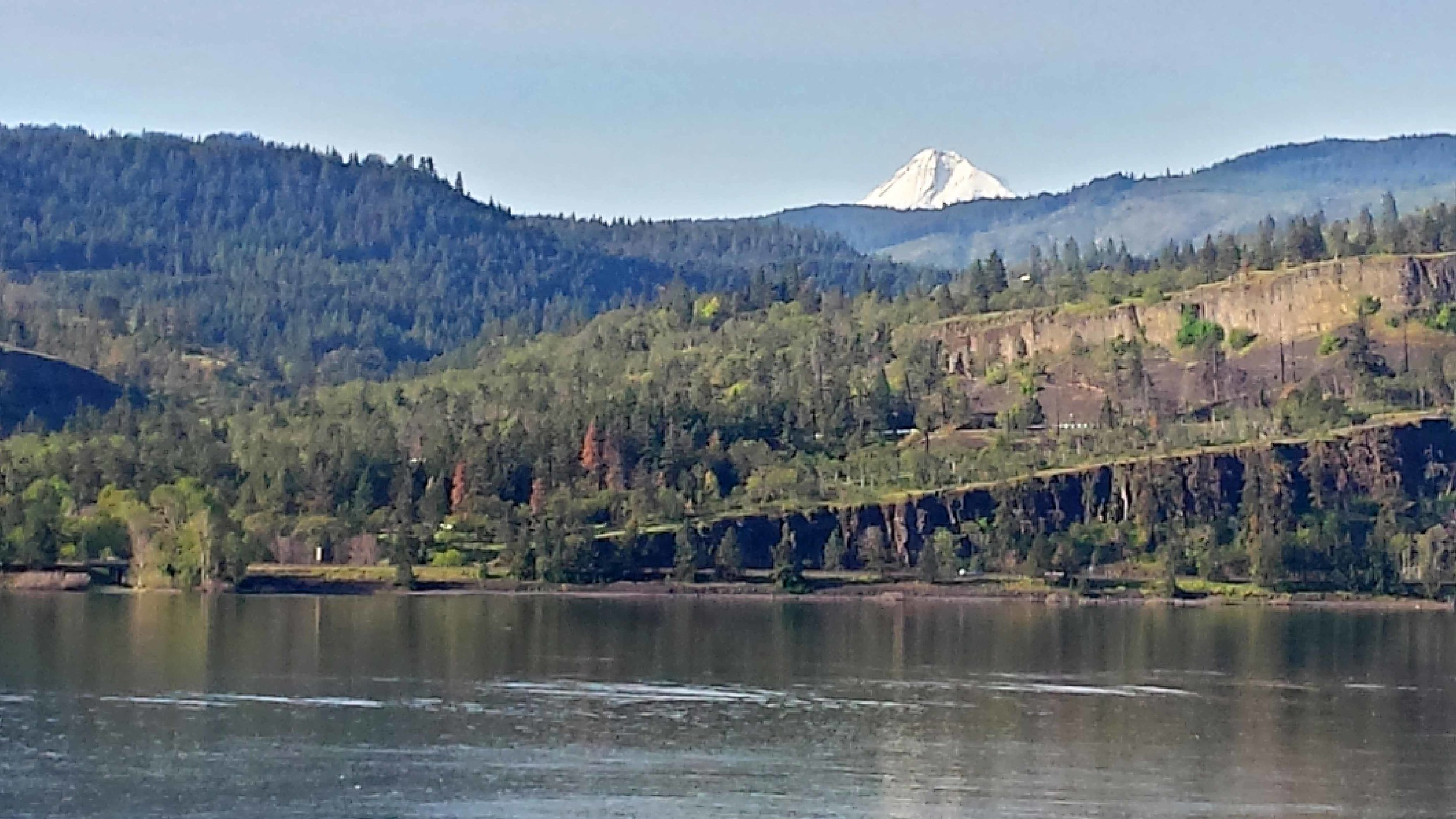 Looking south to Mount Hood. Photo: (c) Barb Ayers, DogDiary.org