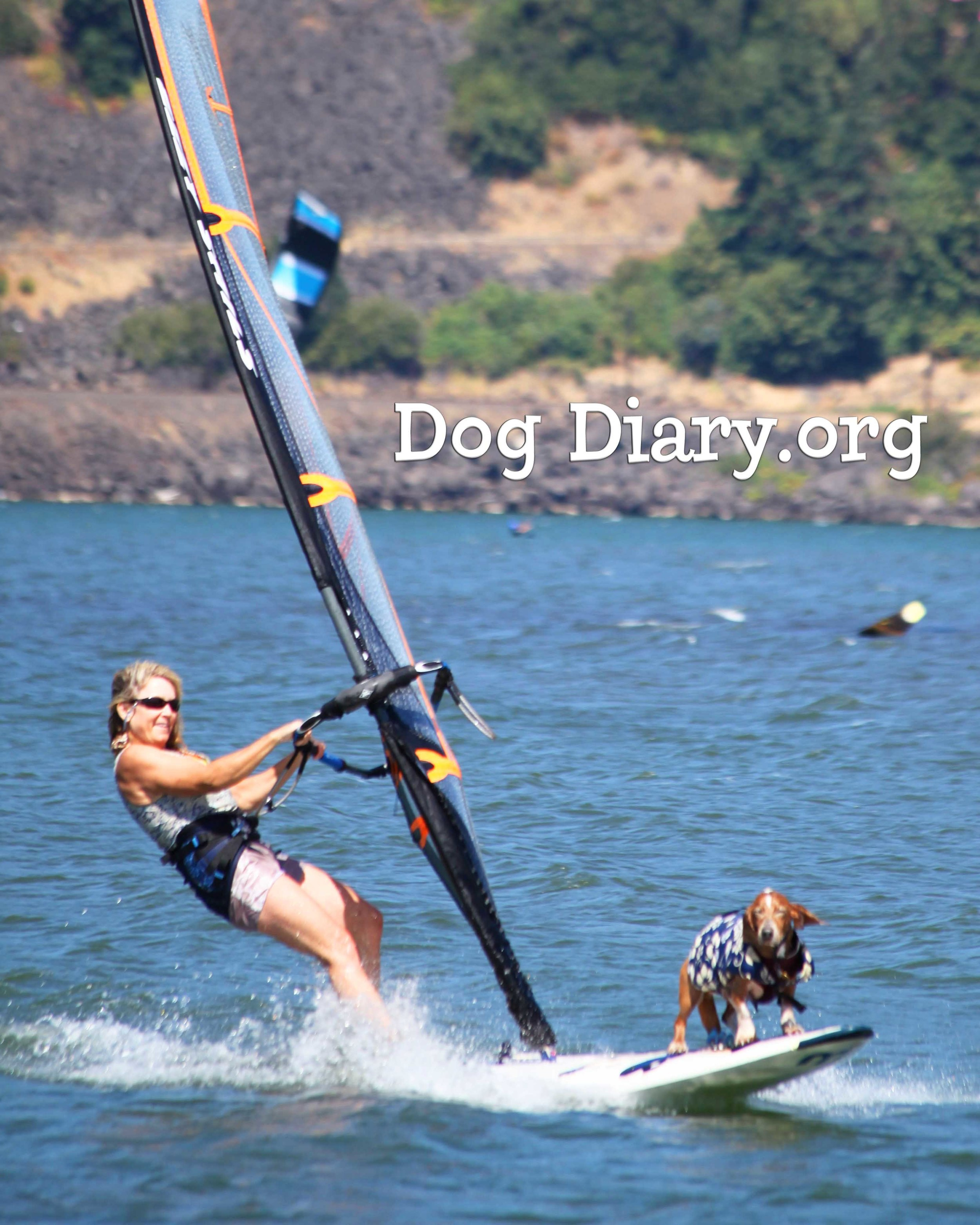 My favorite thing - windsurfing the Gorge. See it, smell it, feel it.