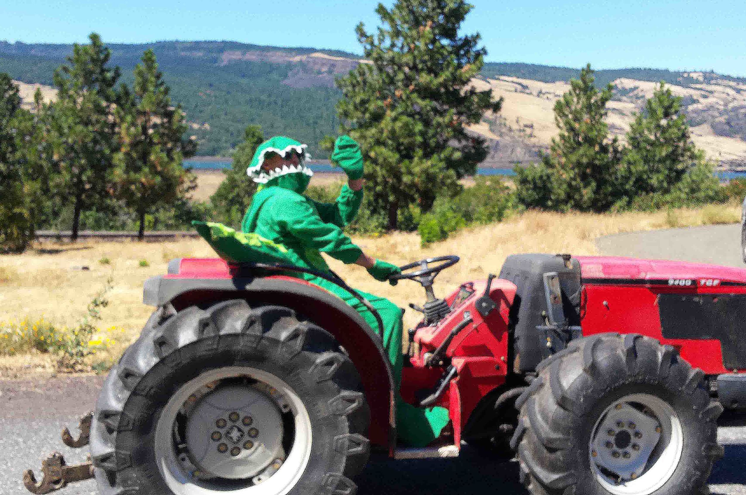 """What in the world? Maybe """"Gator on a Gator"""" in the parade?"""