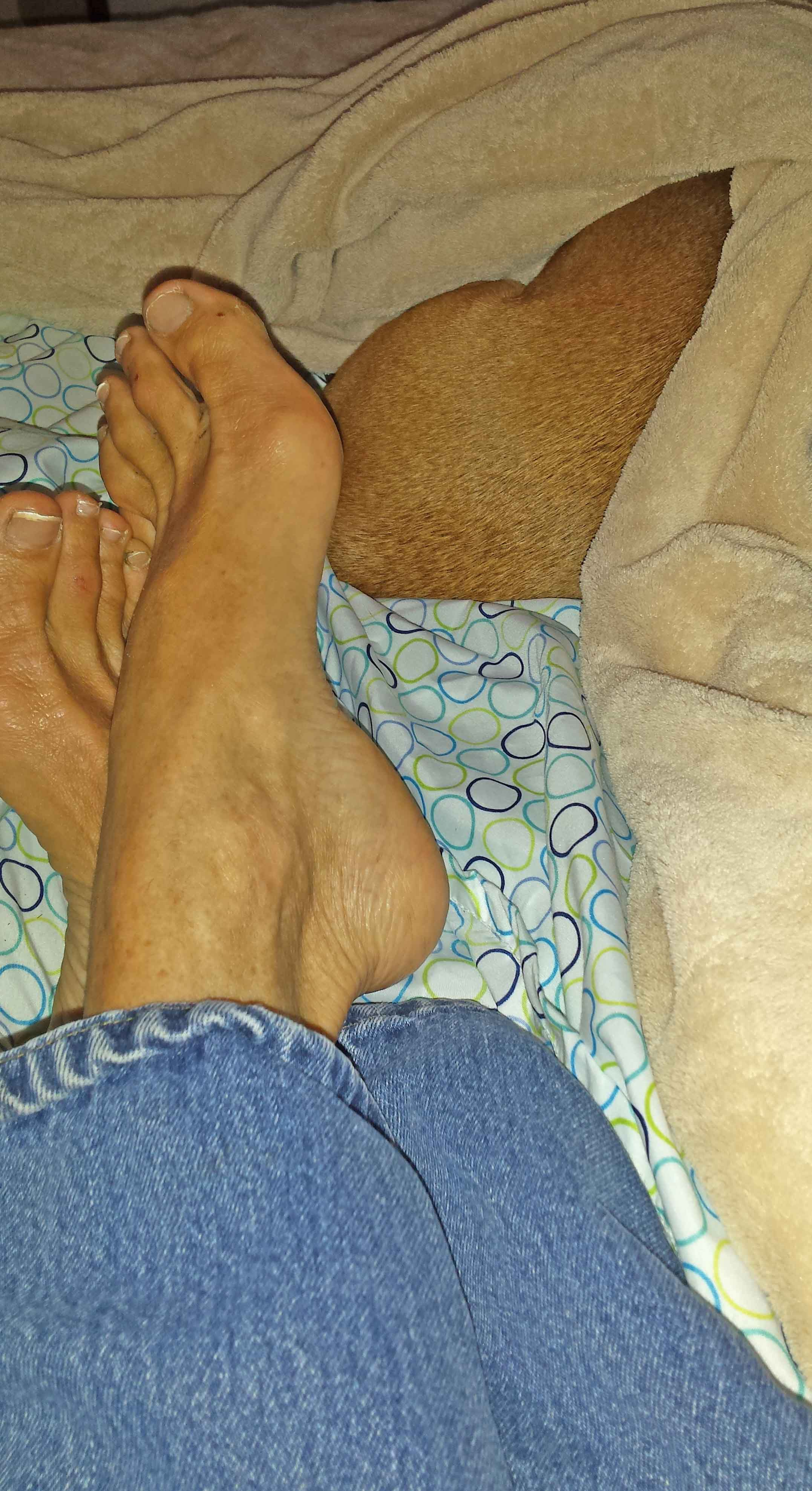 It's almost worse on day 2 . This was Doodle and I, the morning after evacuation.   I'm wearing third-hand clothes. I need a pedicure. I'm so stressed, I am unable to form a sentence. All animals were hiding undercover.   Photo: Barb Ayers, DogDiary.org
