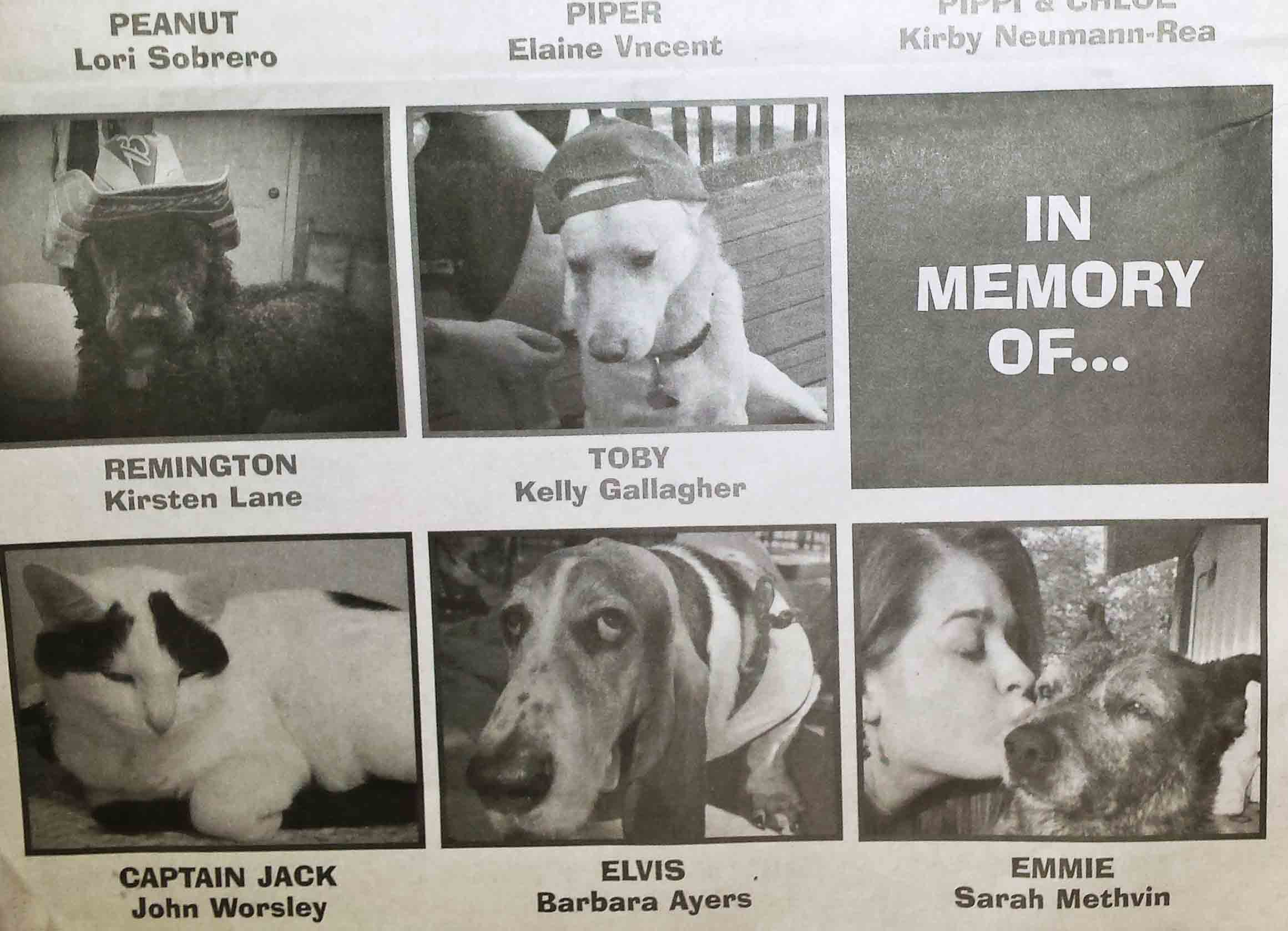 Pet photo contest special section published by  Hood River News