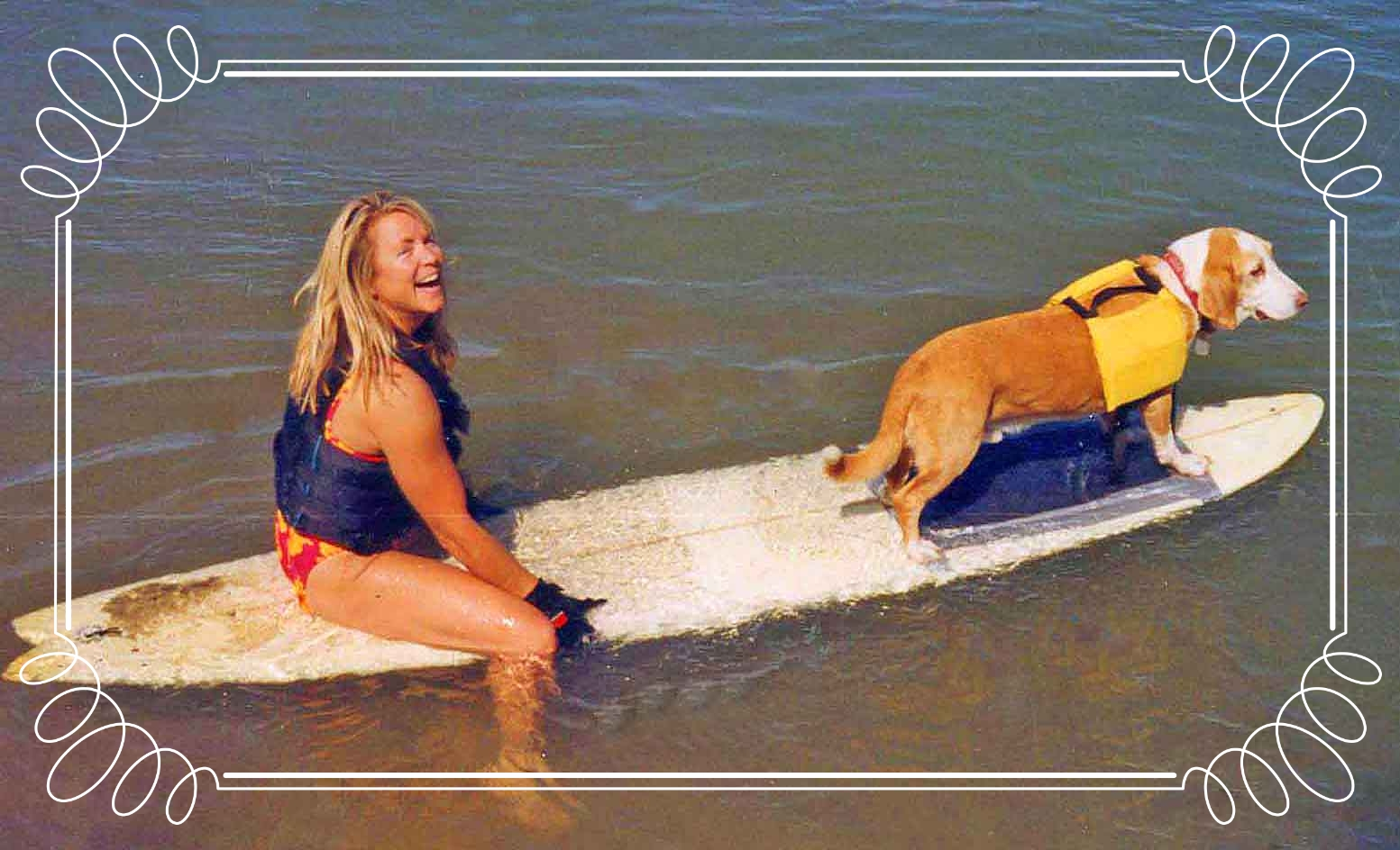 River surfing on the Colorado River, one of Howdy's many sports. Howdy rode waves at Dog Beach and windsurfed Mission Bay in San Diego and was star of national TV shows. Howdy was my co-chair of Ocean Beach Town Council's Dog Beach Committee - together with the community, we fixed up our favorite beach.     Photo (c) Barb Ayers, DogDiary.org