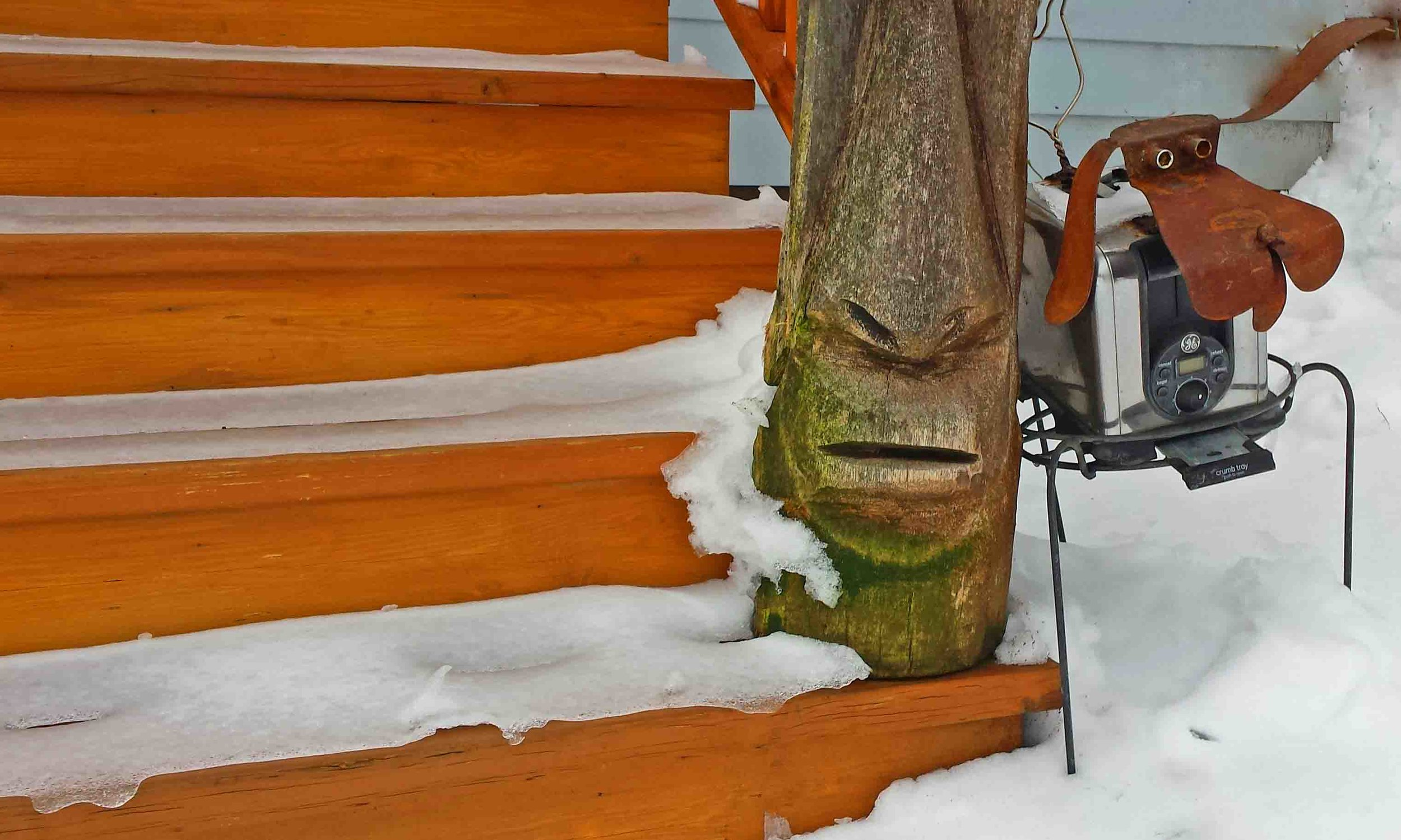Yes, that's ice on our steps. Tiki dude and me, Rusty, recycled toaster dog, at the home office of DogDiary.org.  Photo: (c) Barb Ayers, www.DogDiary.org