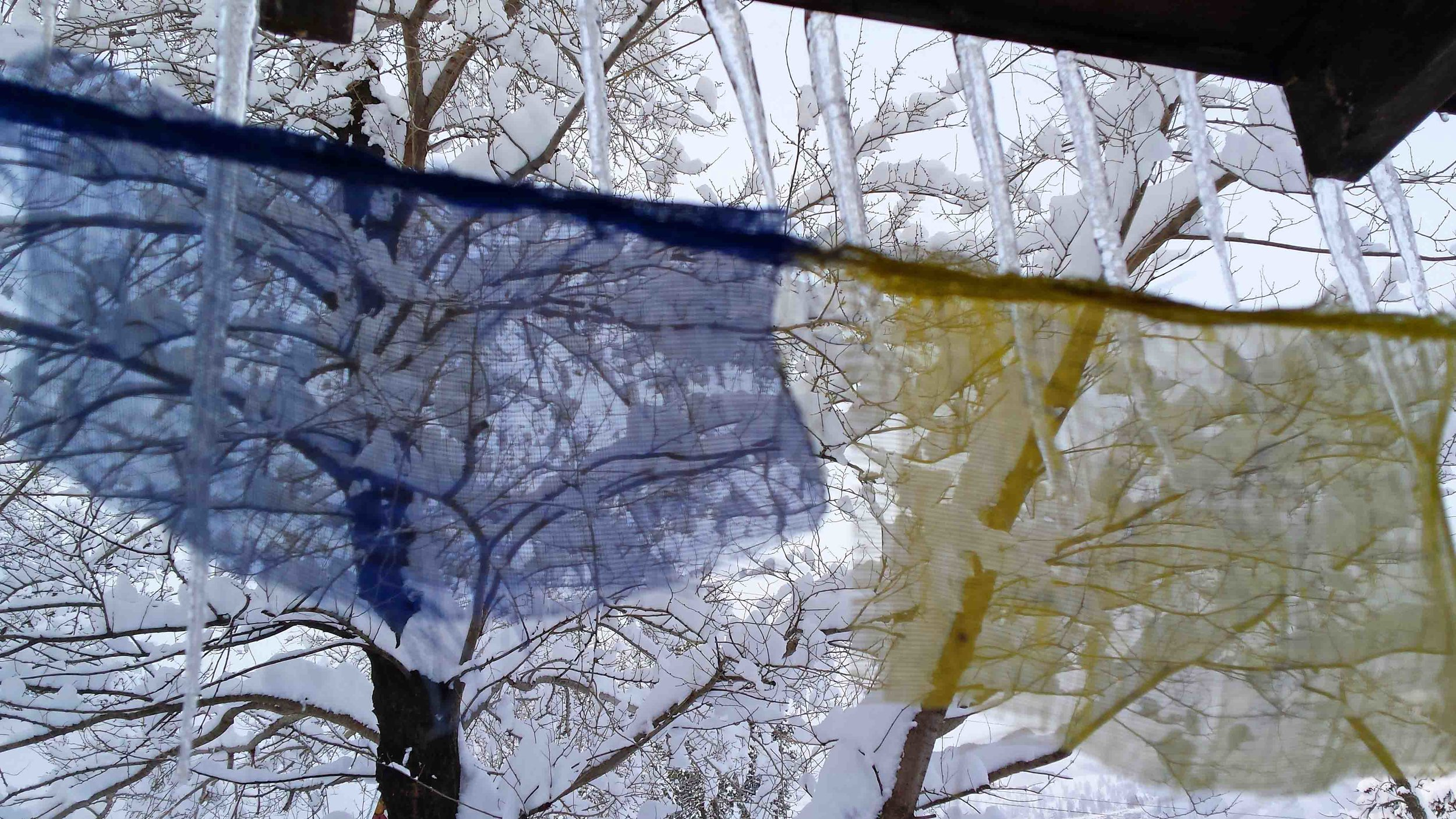 Prayer flags, front porch. Photo: (c) Barb Ayers, www.DogDiary.org