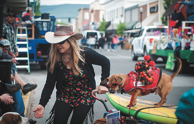 Surf Dog Diaries  out in the community -- we brake for basset hounds -- doxie Doodle and I couldn't pass this beauty up on the parade route. We won third in the huge parade - go figure! Photo: Flora Gibson, The Dalles Chronicle