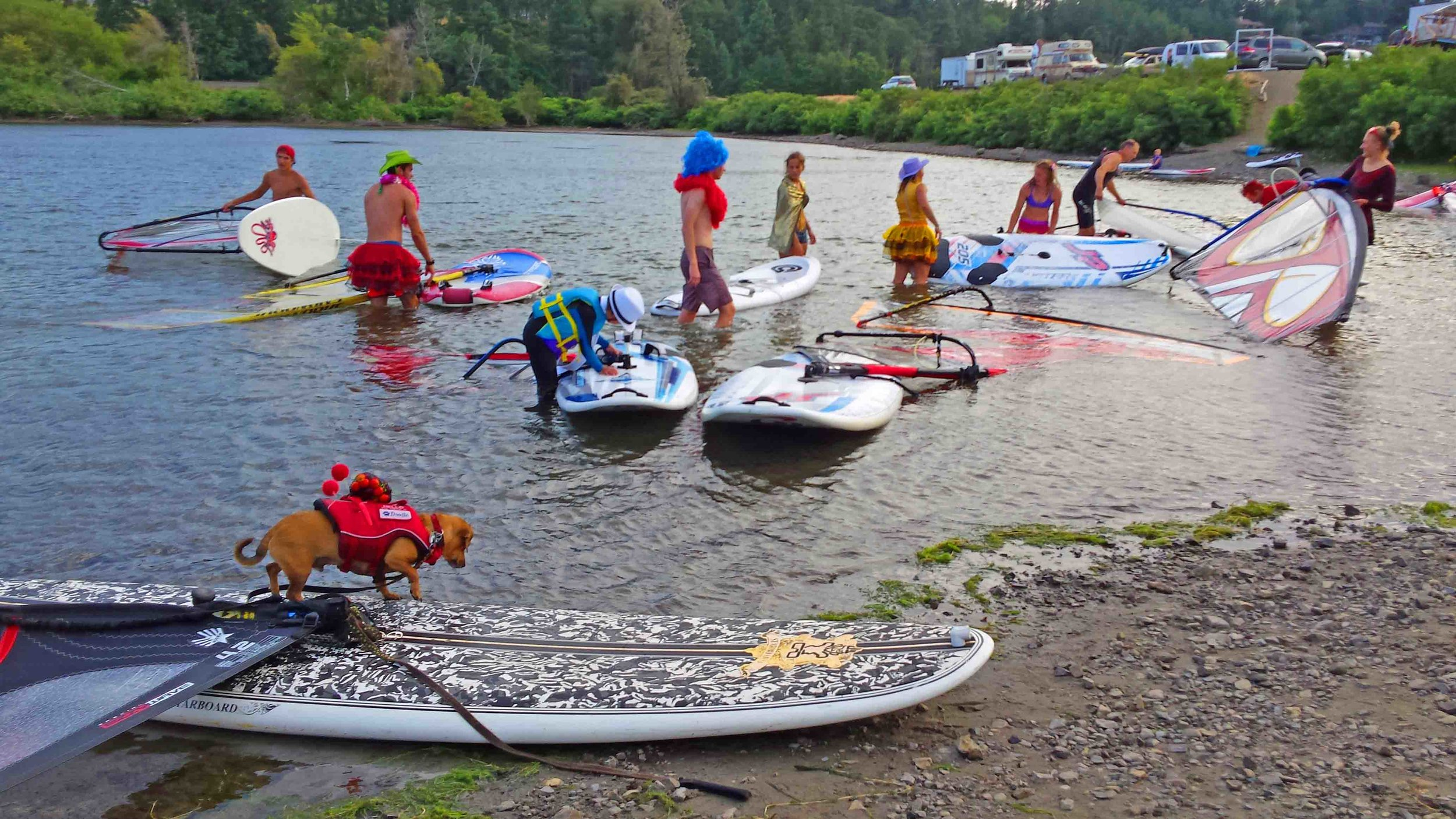 Hood River's windsurfing learning pond - The Hook. Doodle and contestants at King of the Hook, August 12, 2017. This is our favorite low wind board, a Starboard that is a combo SUP/windsurf board.   Photo: (c) Barb Ayers, DogDiary.org