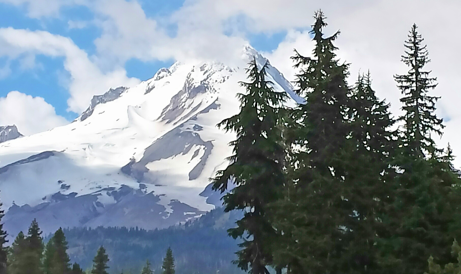 Mt Hood, in our Oregon backyard.Photo: (c) Barb Ayers, DogDiary.org