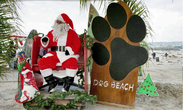 At Sandy Claws, insert your dog here - on the old man's lap. Photo: (c) Barb Ayers, DogDiary.org