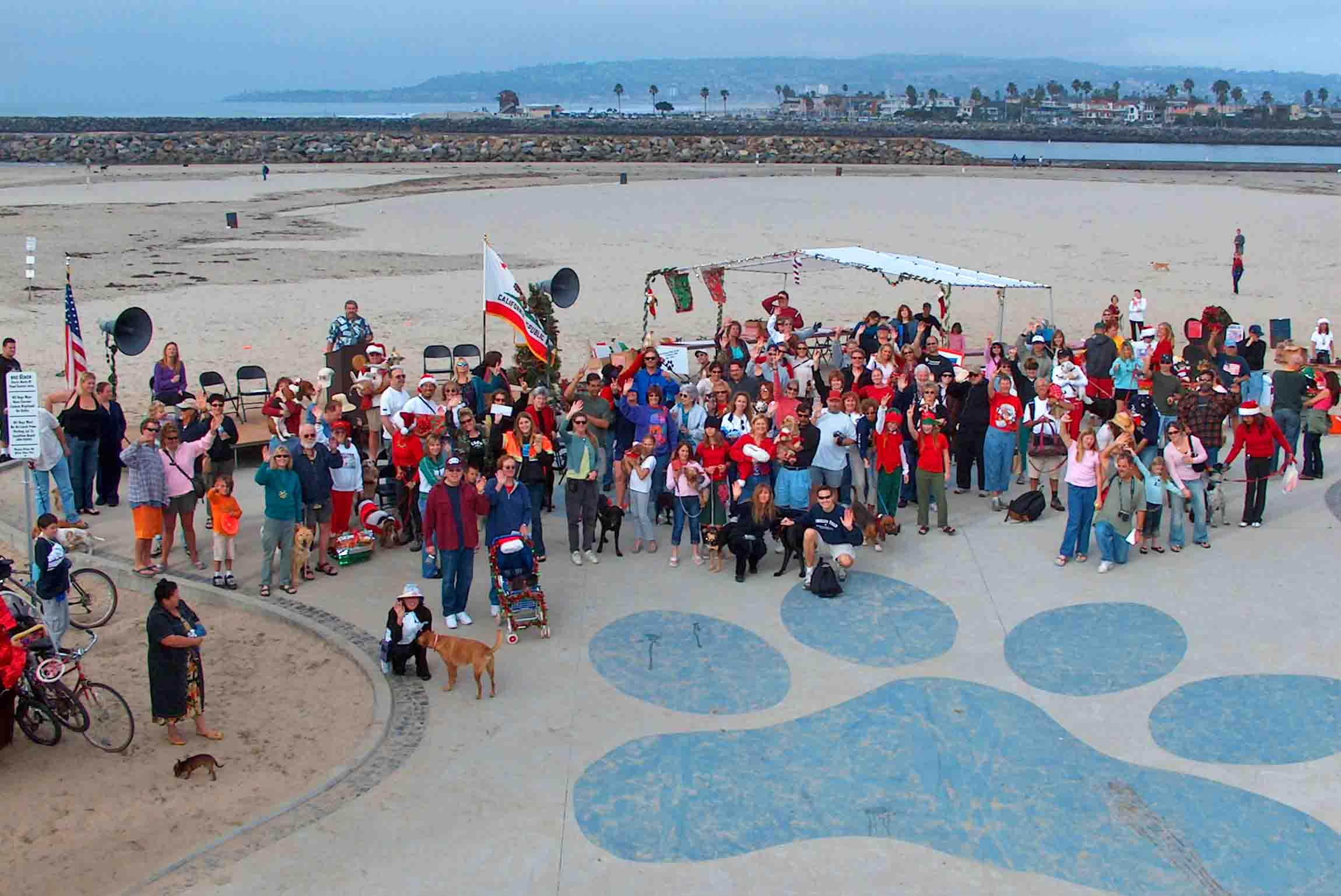 Dog Beach community.  Photo: (c) Barb Ayers, DogDiary.org