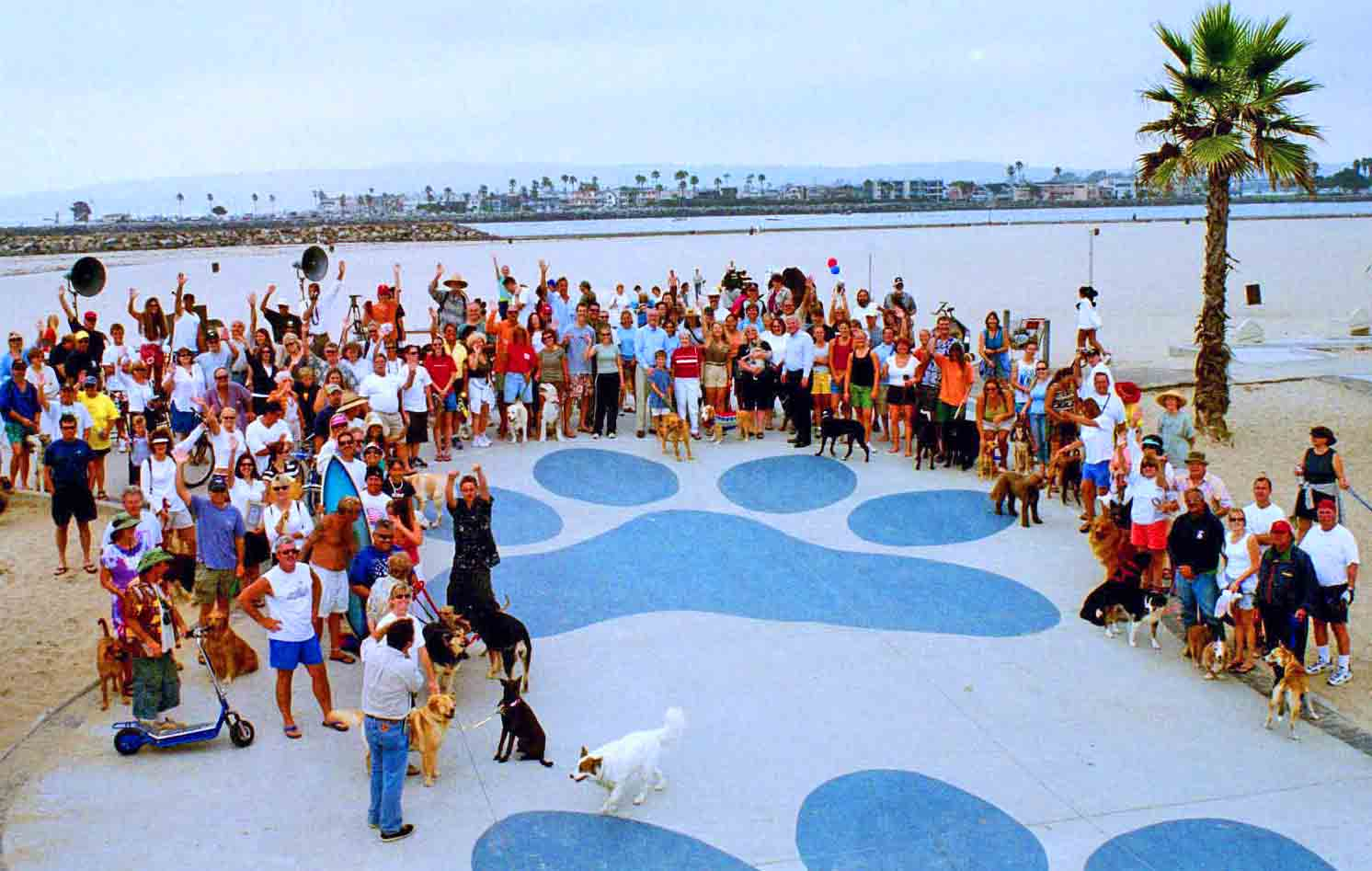 Dog Beach in Ocean Beach - at one of our Dog Beach Improvement Project fundraisers .  Photo: (c) Barb Ayers, DogDiary.org