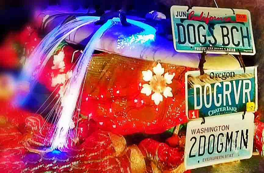 Back of the windsurf rig - license plates from our three stomping grounds. Photo: (c) Barb Ayers, DogDiary.org