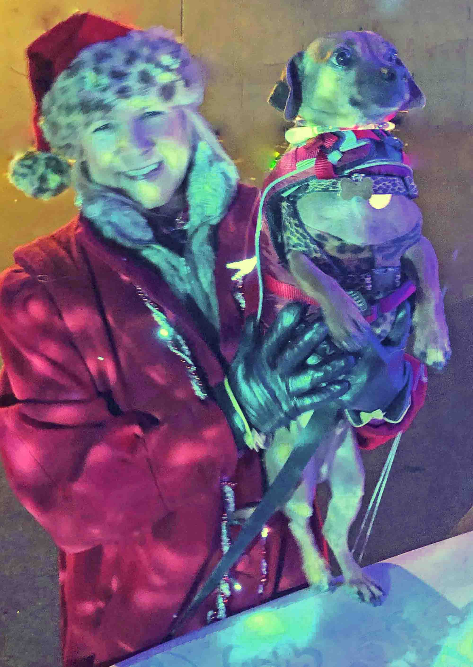 Doodle and I,  Surf Dog Diaries  writers and riders, lit up by snowflake lights.  Photo: (c) Terri Vann, DogDiary.org