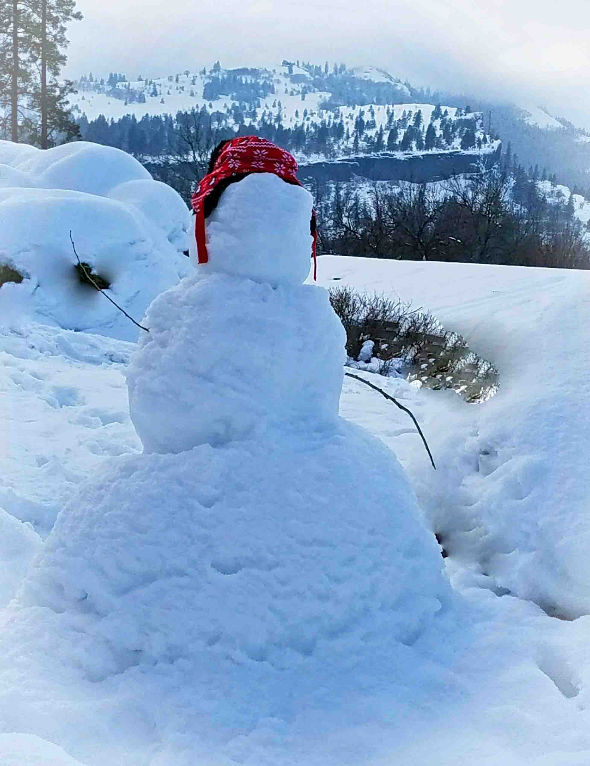 Our Snow Man. Photo: (c) Barb Ayers, DogDiary.org