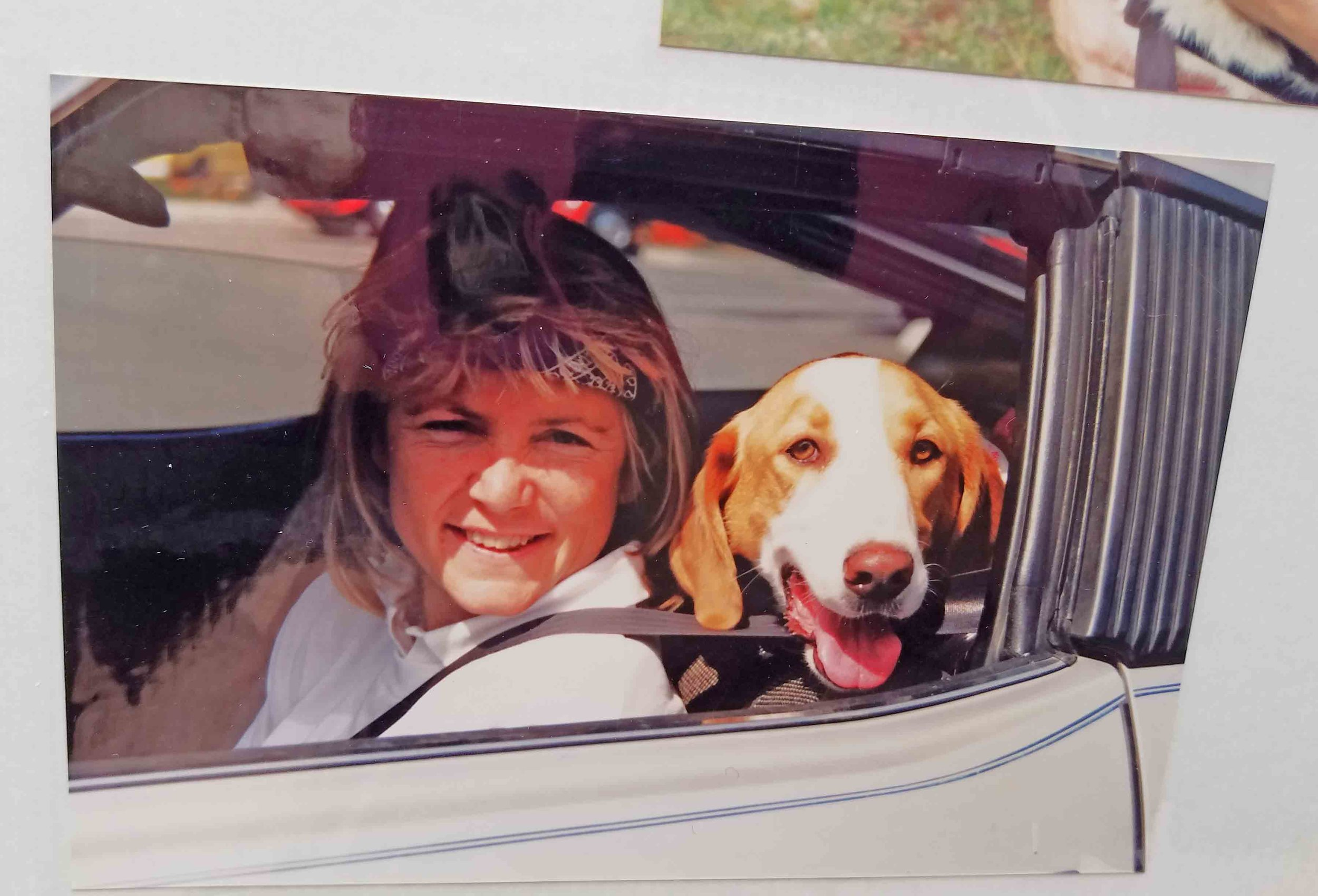 1991 - Howdy, my first basset, and my first tandem surf partner. Photo: (c) Pat Brown, DogDiary.org