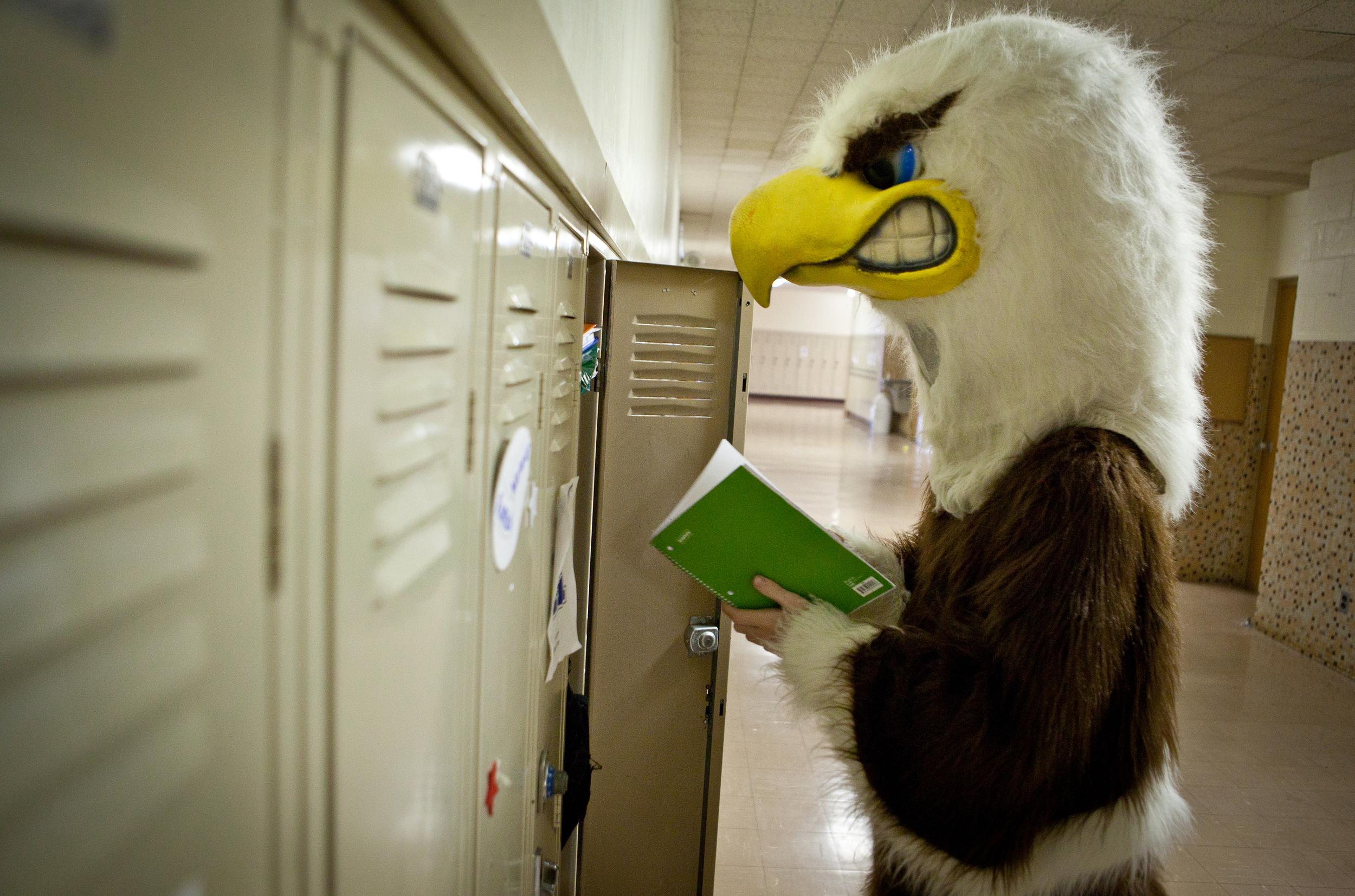 eagle-12.jpg