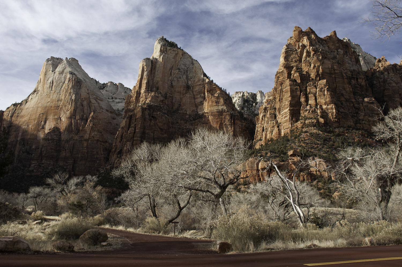 Zion 2011-293.jpg