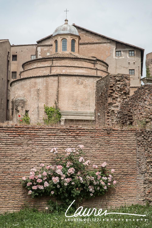 Rome-1085 copy.jpg