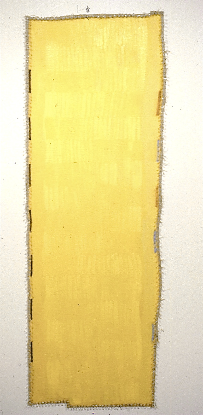 JGR. 1992. Herself, Perfect. oil & flashe_linen with pushpins. 71x24_#D848.jpg