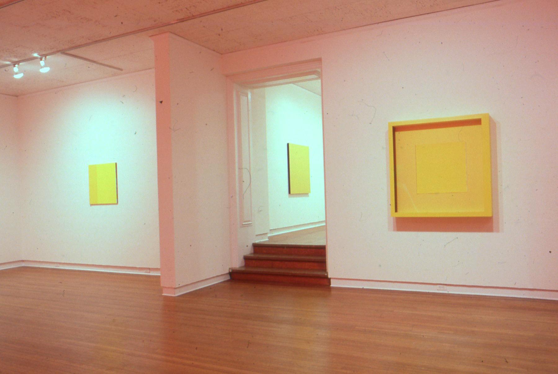 JGR. 1988. Borgenicht Gallery2.jpg