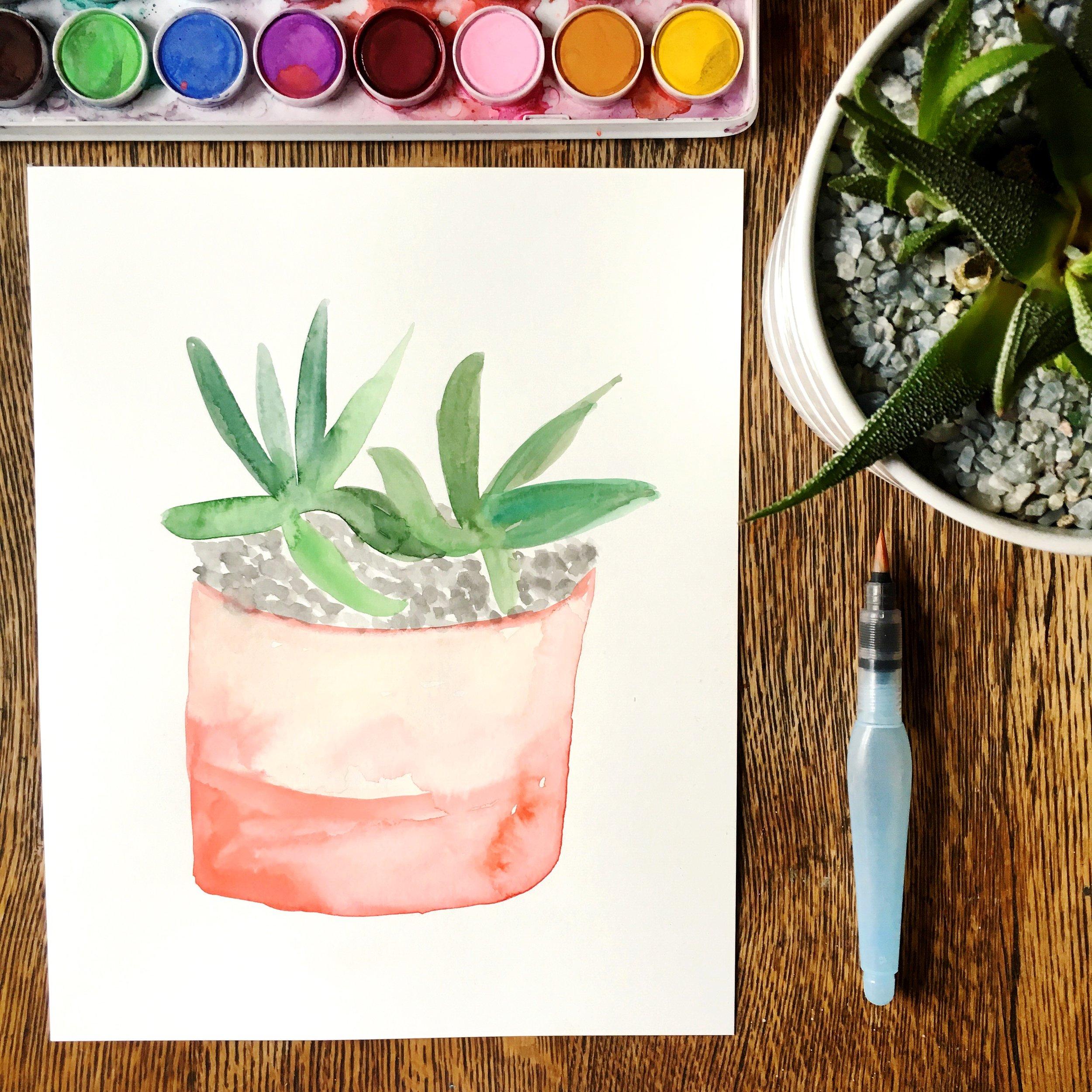 watercolor-succulent
