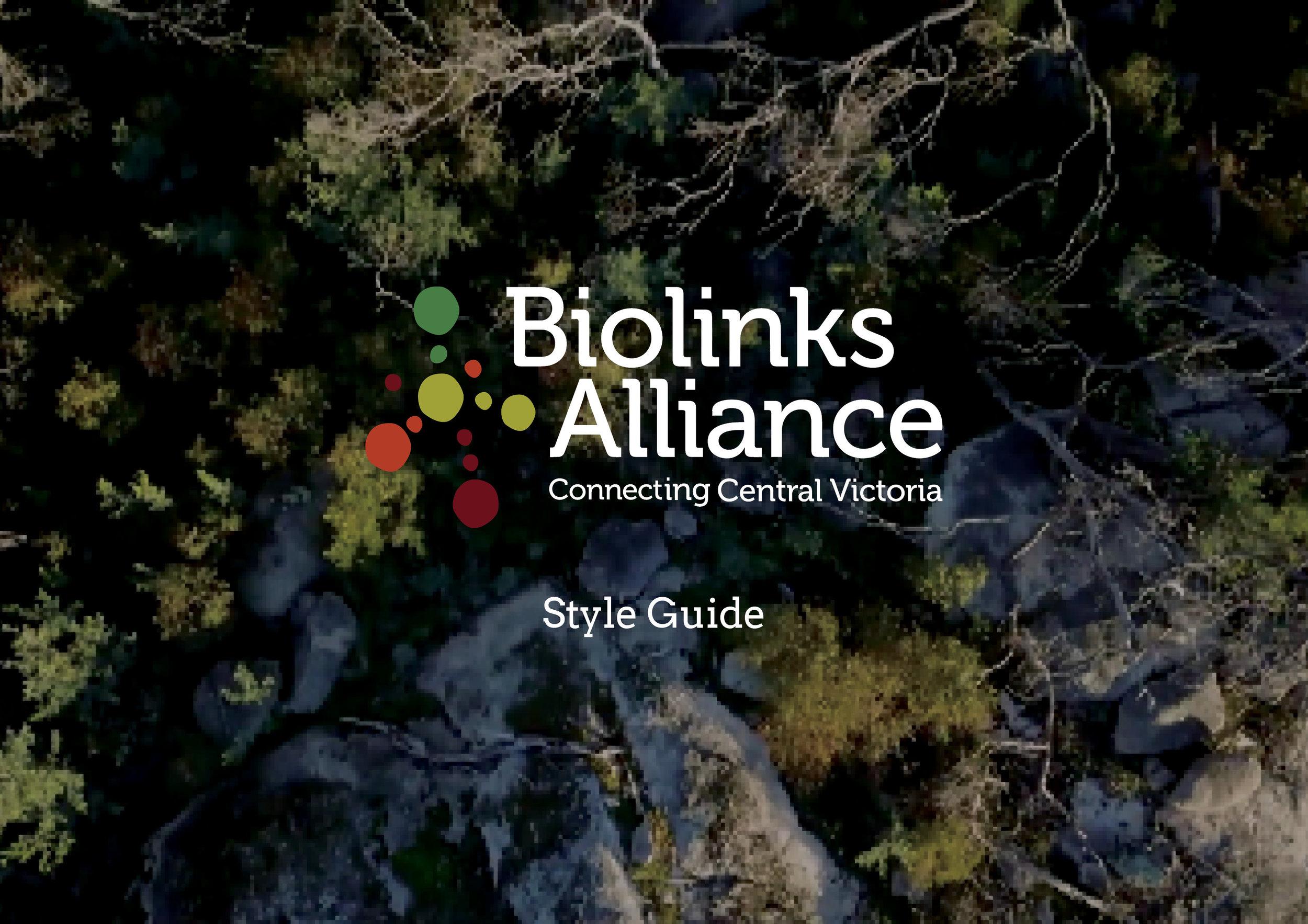 Biolinks Logo guide.jpg
