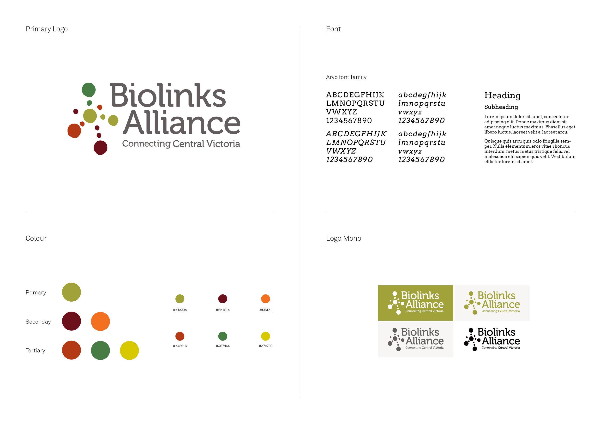 Biolinks Logo guide2.jpg