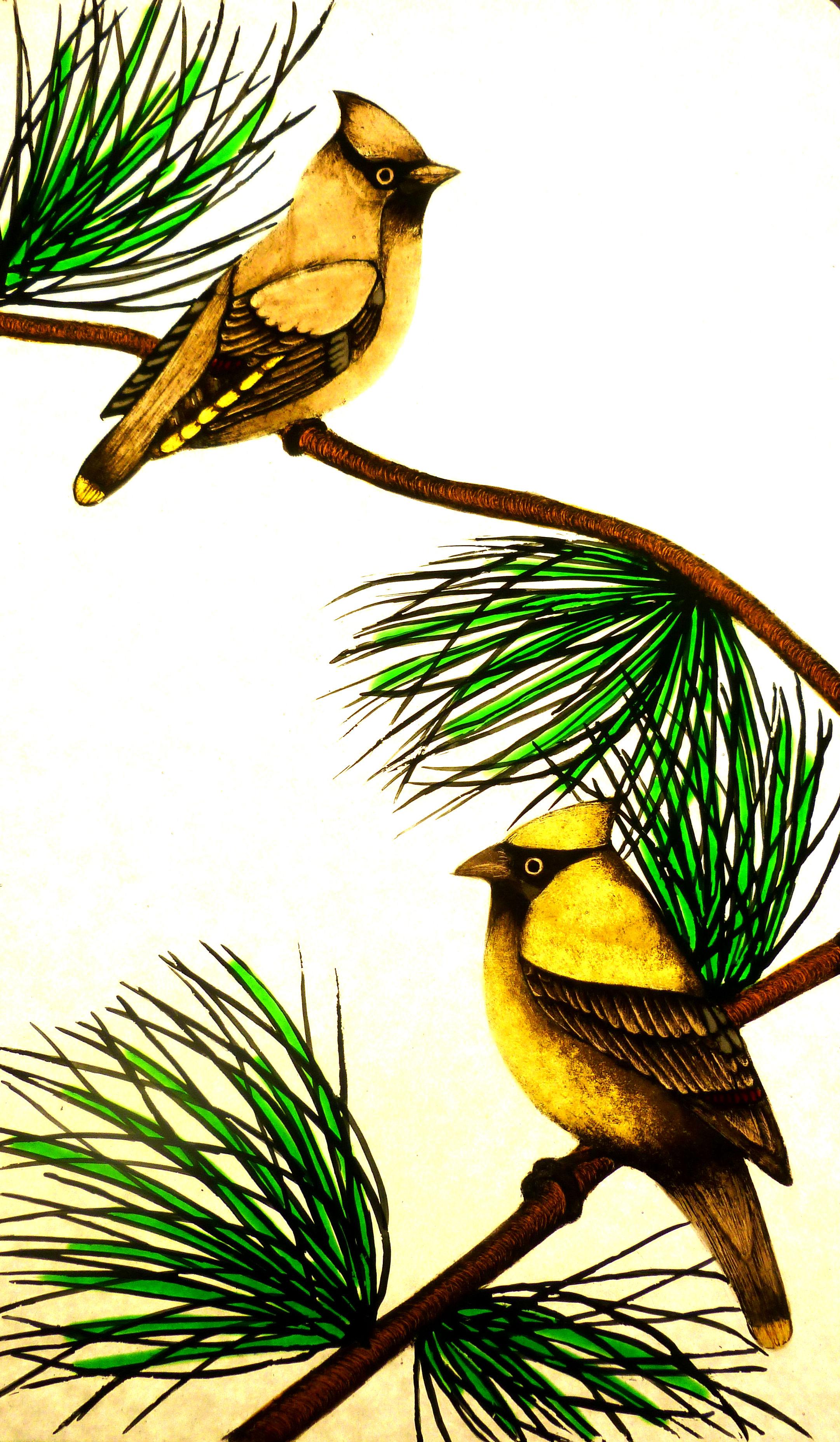 Waxwing Birds.jpg