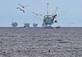 birds on oil platforms - helipads