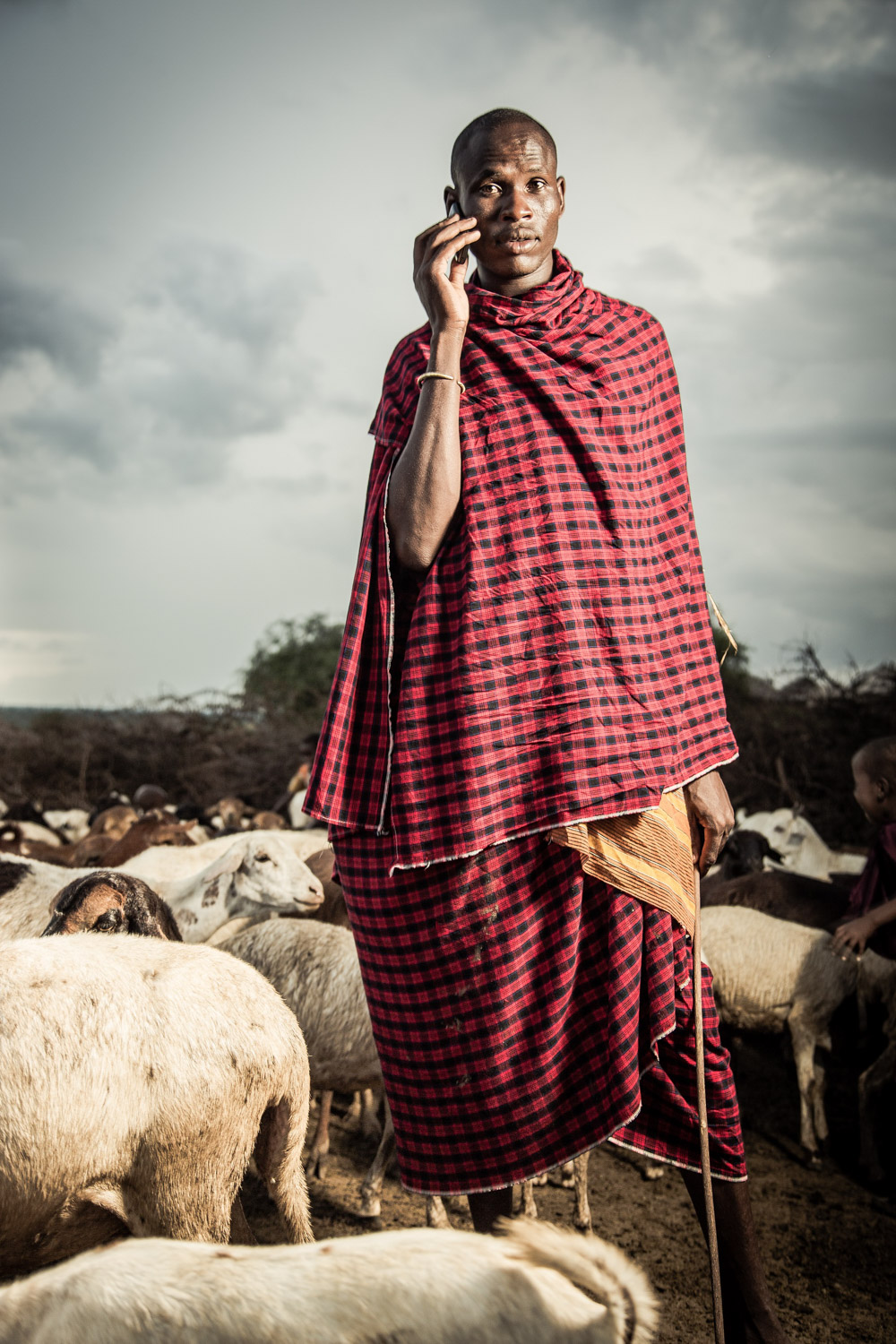 The introduction of the mobile phone has been revolutionary for the Maasai. These once-isolated people can now easily communicate with others in neighbouring communities as well as in towns and cities across Kenya and Tanzania and beyond. They have instant access to the market price in other parts of the country for livestock; in a flash they can call a doctor if they fall ill, and they can keep in touch with family when they were far away from home grazing the cows. With the rise of the smartphone, a whole world of opportunity is opening up for the Maasai. Internet businesses are being established, phone banking and money transfers are the norm, political opinions are being discussed on a wider scale and social media sites such as Facebook have become an obsession among younger Maasai.