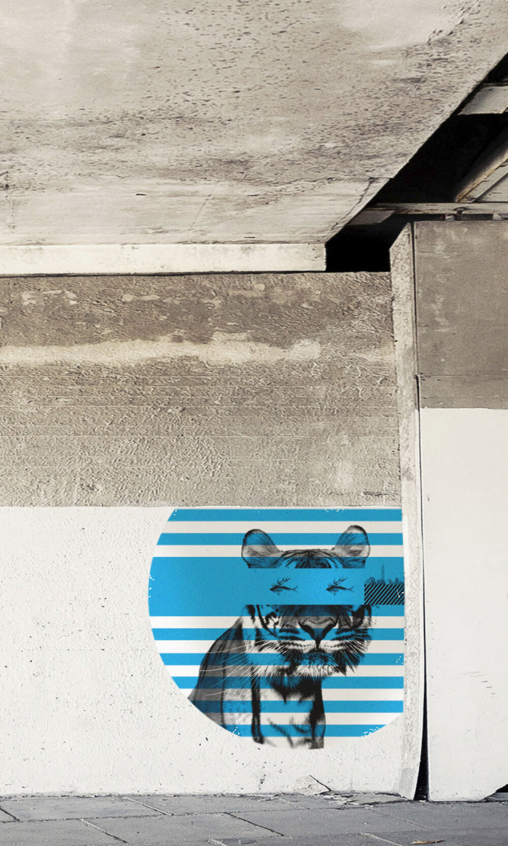 TroyBarbitta-Gallery-5.jpg