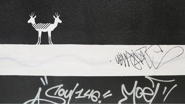 TroyBarbitta-Gallery-16.jpg