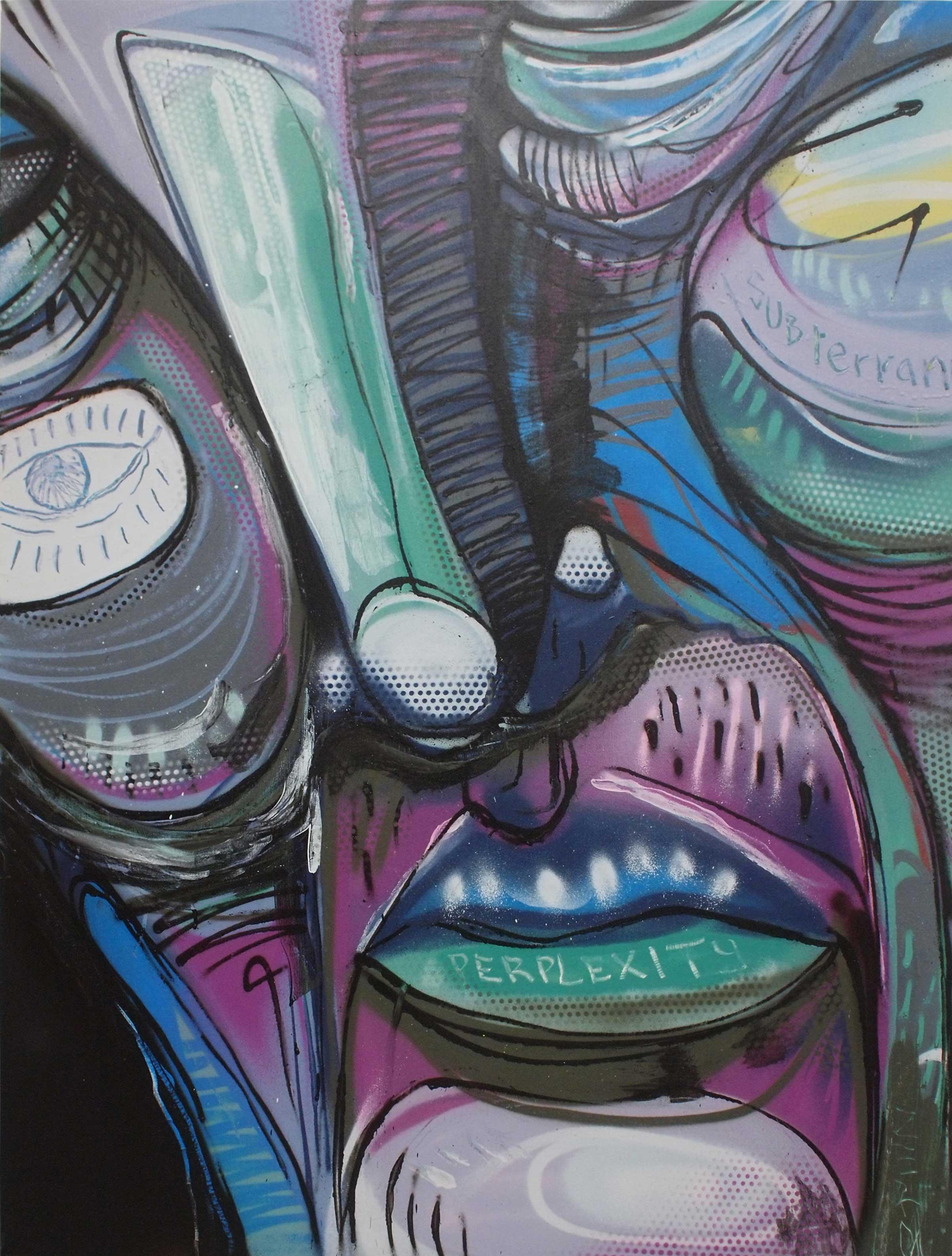 """ZERO  SubPerplexity  2013 Aerosol paint on canvas 48 x 36"""""""