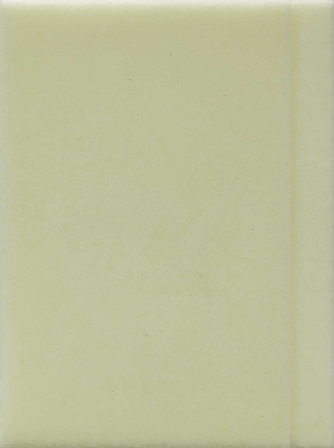 Luke HENG Monologue 2.2 2015 Paraffin wax, beeswax and steel shelf H52 x W39 x D3.5 cm (artwork) H4 x W40 x D5.5 cm (shelf)