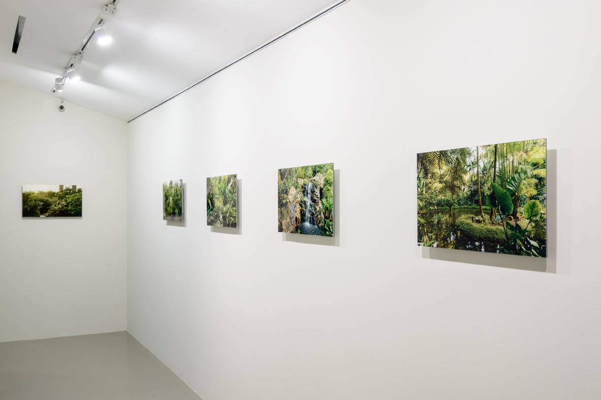 Installation View of  My Forest Has No Name , 2014-Ongoing Credit: Eric Tschernow, Jason Lau and John Yuen (Fotograffiti) Photo Credit:Fotograffiti (John Yuen)