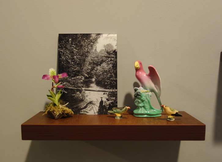 Donna ONG  Postcards from the Tropics (iv)  2016 Diasec print, wooden shelf, and tropical souvenirs (clay orchid on wood, antique ceramic parrot and vintage miniature ceramic birds) Dimensions variable