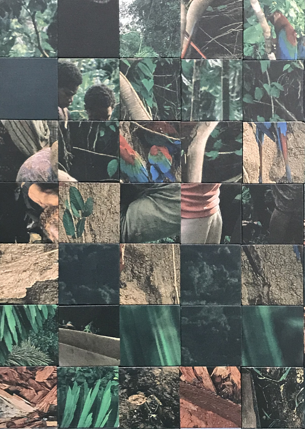 Donna ONG  Tropical Shades (I): Rainforest Narratives from the National Geographic (2010-2018) , detail 2018 UV print on rubber magnets H480 x W249 x D0.3 cm
