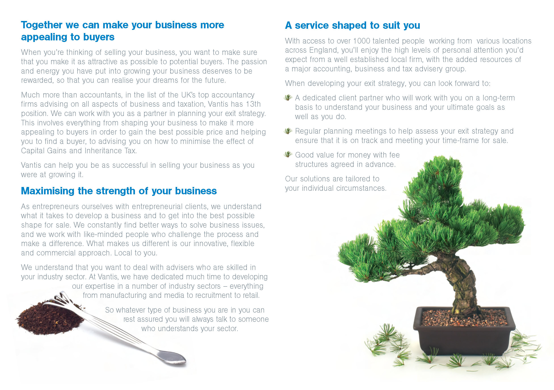 toybox_creative_vantis_exit_phase_brochure1_Page_2.jpg
