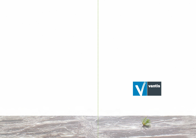 toybox_creative_vantis_exit_phase_brochure1_Page_4.jpg