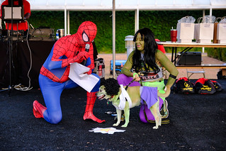 Super Dog: She Hulk, Panko & Pam Delahoussaye