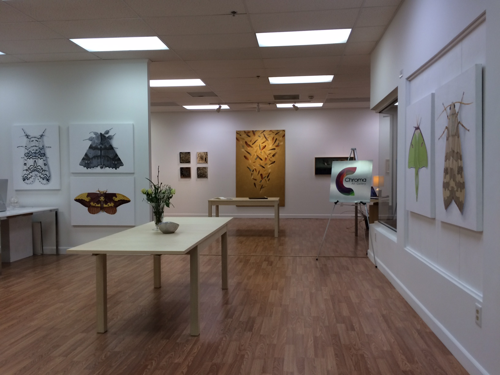 View of PCA and Chroma Galleries.jpg