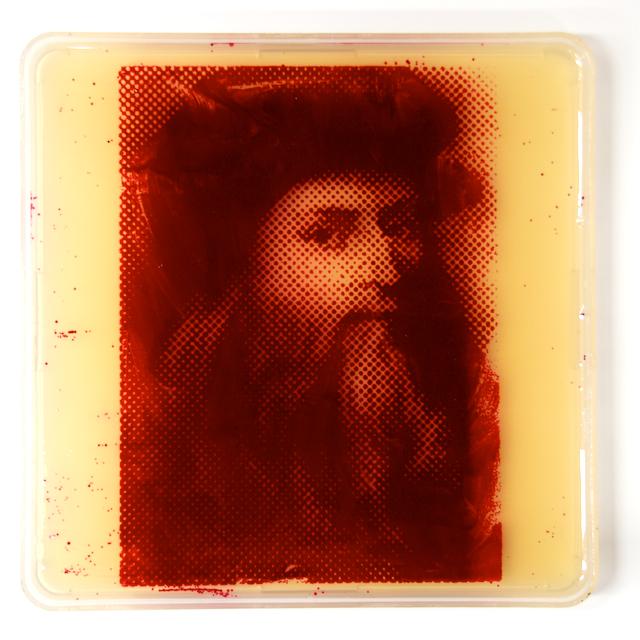 Leonardo da Vinci portrait in bacteria