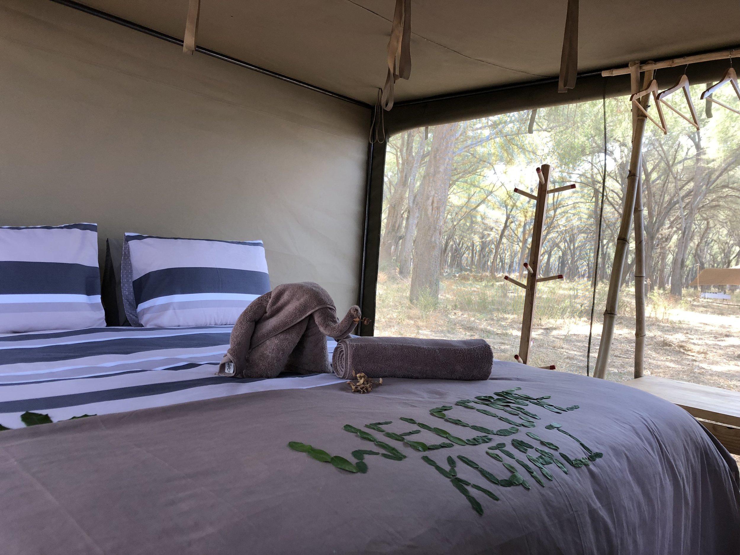 Kutali flycamp lower zambezi.JPG