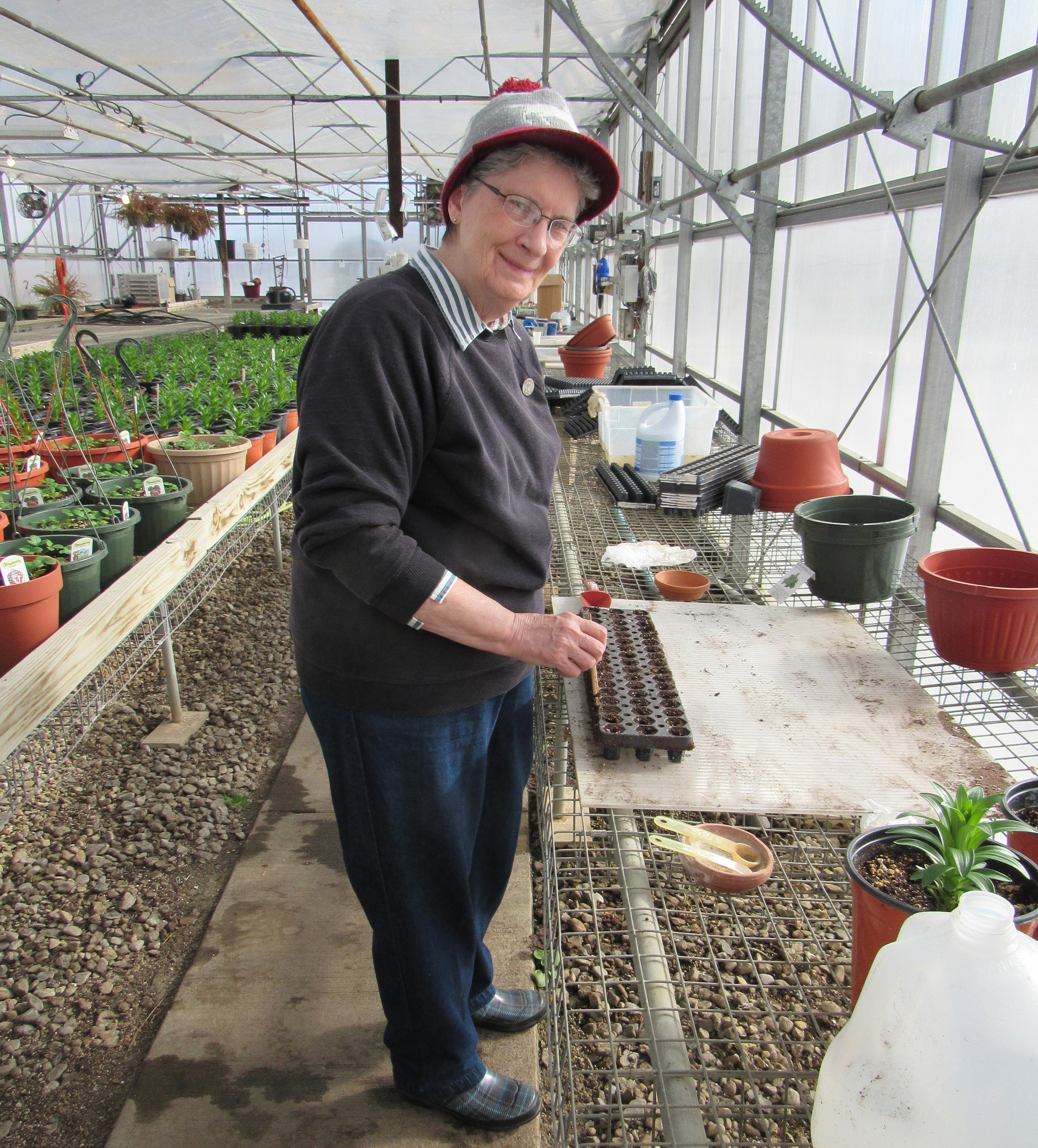 Sister Linda Valasik seeds parsley in the Villa Maria Farm Greenhouse.